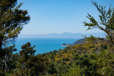 A view over forest to the blue sea of the bay
