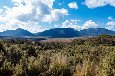 A view looking back towards Perry Saddle from the Gouland Downs