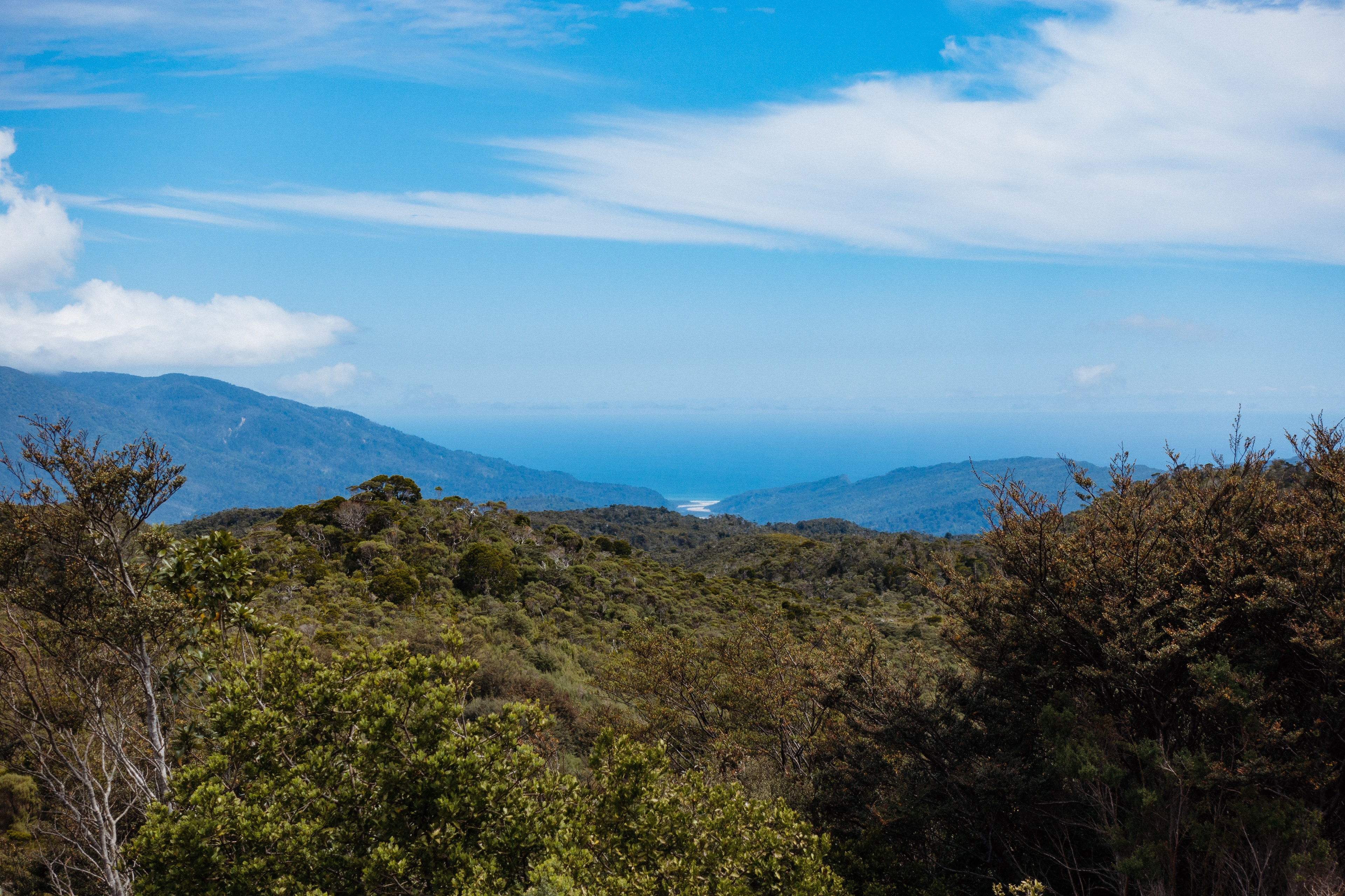 A view down to the mouth of the Heaphy from James Mackay Hut
