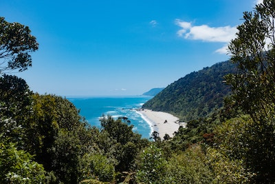 Looking back up the Heaphy Track, with blue skies, sandy beaches and red rata trees