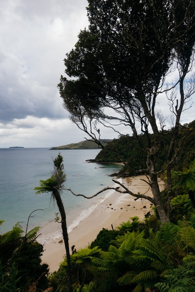 A beach with a Tui
