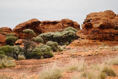 Rocks and trees at Kings Canyon