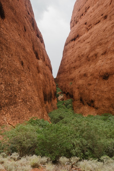 The end of Walpa Gorge