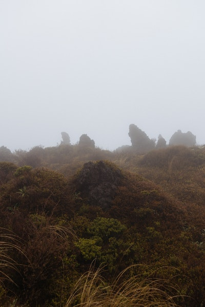 Mist rises over volcanic rock formations