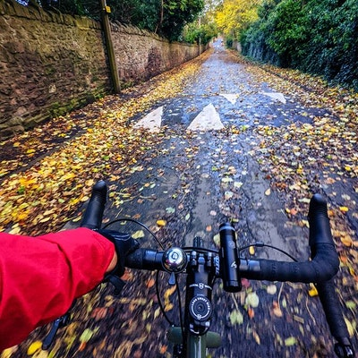 A view from my bike saddle, down a road with yellow leaves on the ground